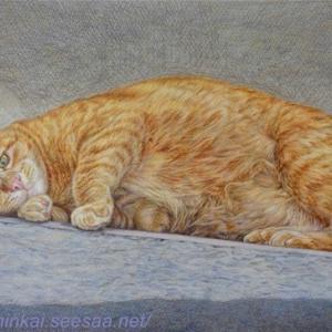 ・ 「トスカーナの猫」 途中経過と、   動物尽くしで、笑える奴を!