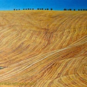 ・ 麦畑刈り取り風景 そろそろ  と、 スコミーゴ村秋の色ちょっぴり