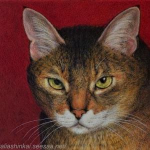 ・ 我が猫 仕上げ と、  抱腹の、動物たちのセルフィー写真!