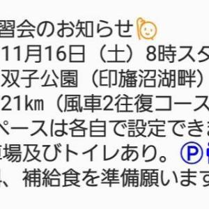 今週末の印旛練はハーフマラソン♪(距離もペースも自由です♪)