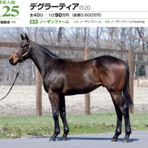 2021年 社台RH/サンデーR募集馬 新規検討⑦サンデーR 関東牡馬