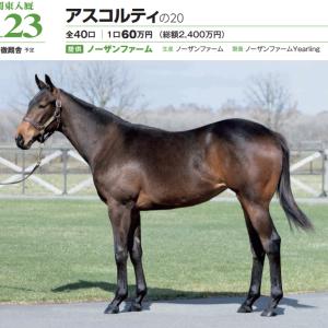 2021年 社台RH/サンデーR募集馬 新規検討⑧サンデーR 関東牝馬