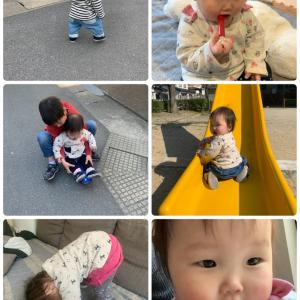 1歳3ヶ月の記録(修正1歳2ヶ月)