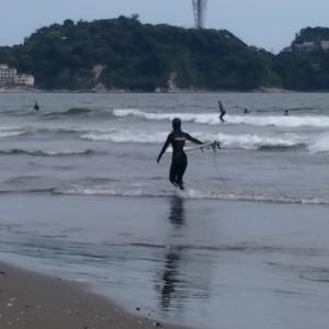 サーフィン観てきた。