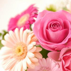 【独身30代オタク女子の婚活】結婚する上で注意しておくべき5つのこと