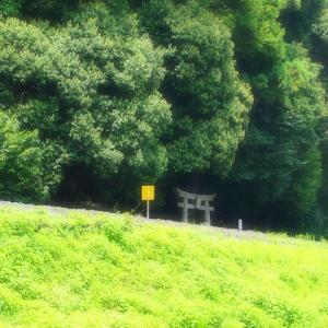 名前も知らない神社「松尾神社」