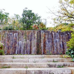 モネの愛した睡蓮の咲く 北川村「モネの庭」