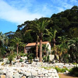 地中海の眩しさ「ボルディゲラの庭」