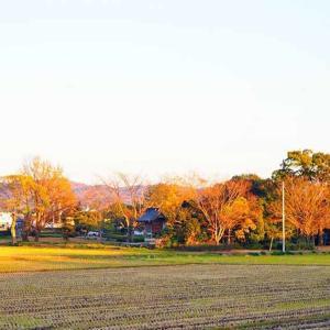 激戦の地「矢喰神社」