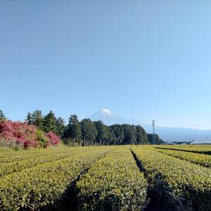 花の湯 富士宮