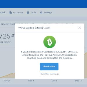 ビットコインキャッシュの将来性