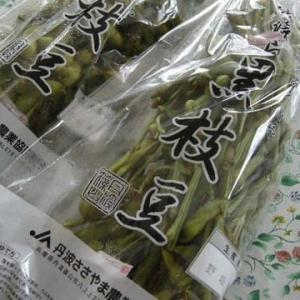 丹波篠山の黒枝豆