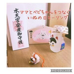 【ご妊娠報告】戌の日ヒーリングでまさかの自然妊娠!