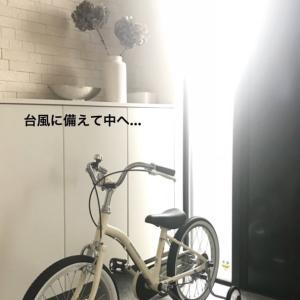 《こども自転車》一番欲しかったものを、選ばなかった理由。