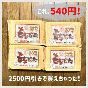 もう届いた!2500円引きの餃子!!