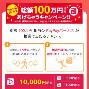 歩くだけ♡最大1万円!PayPayにアマギフもらえる!!