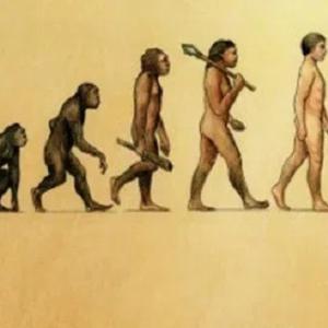 キリスト教と進化論