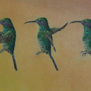 ハチドリ 油絵