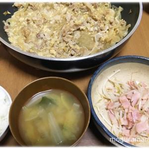 今週の食費/豚肉と玉ねぎの卵とじ、もやしベーコン炒め