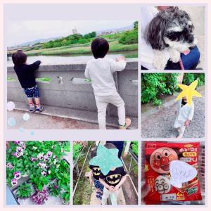 2020/05/15 お花屋さん