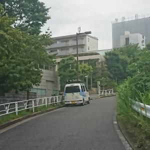 久しぶりのお出かけ 渋谷&銀座