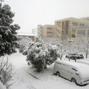 首都圏に大雪が降れば新型コロナの感染は止まる!