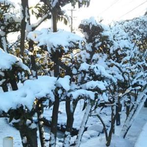冷え込み、雪も積もる