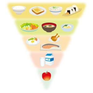 栄養素を学ぶのにお勧めの本[概要とおすすめ点]