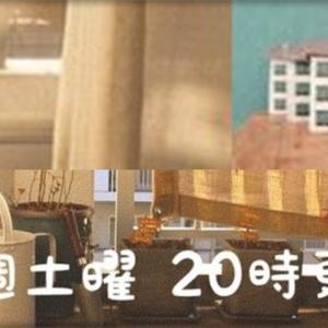 【楽しく役立つ動画紹介】Hayao 〜団地ひとり暮らし〜