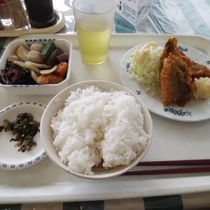 福岡市役所の社員食堂 カフェテリア方式の400円ランチ お得で栄養満点の天神ランチ