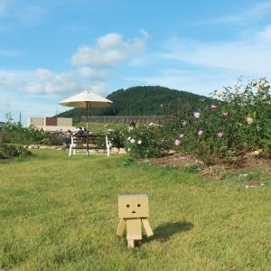 世羅高原花の森「秋のローズフェスタ」