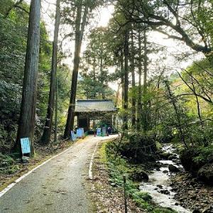 鰐淵寺(がくえんじ)
