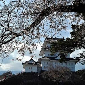 小田原新城下町を訪ねて~