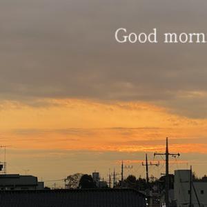 今朝は寝坊〜〜〜