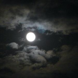 昨夜時折現れるお月様美しかった♪