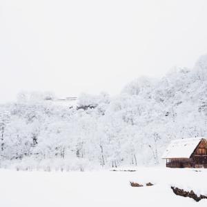 冬の時代  FXの実績ふりかえり:2019年2月(27ヶ月目)