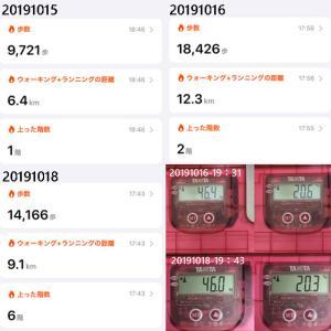 20191015火~1101金 歩数 体重