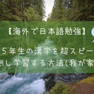 【海外で日本語勉強】小学5年生の漢字を超スピードで前倒し学習する方法(我が家流)