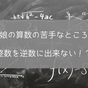 【娘の算数の苦手なところ】整数を逆数に出来ない!?