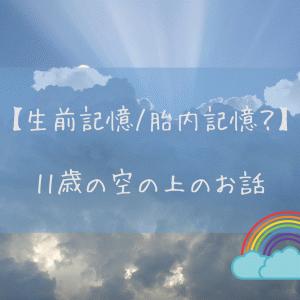 【生前記憶/胎内記憶?】11歳の空の上のお話