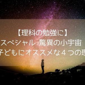【理科の勉強に】「NHKスペシャル 驚異の小宇宙 人体 」 が子どもにオススメな4つの理由
