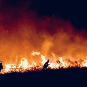 オーストラリアの大規模な山火事 原因は地球温暖化という印象操作リバティーweb