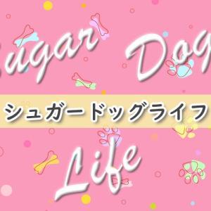 シュガードッグライフ(BL漫画)のあらすじ・感想ネタバレ!補導されかけて始まった恋!?