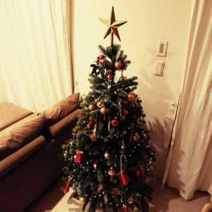 チキンライス「あるマザコンで恐妻家のメリークリスマス」(再投稿)