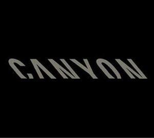ネット販売だけの人気バイク「CANYON(キャニオン)」のロードバイクも修理いたします!