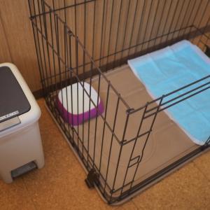 犬連れで星野リゾート☆お部屋が普通とは違う点に注意…💦