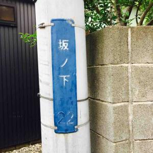 鎌倉、ノートのこと、そして美味しいシナモンロール