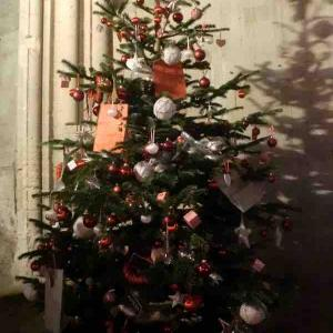 クリスマスシーズンのお出かけ