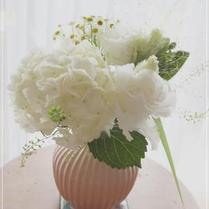 白い花が好き