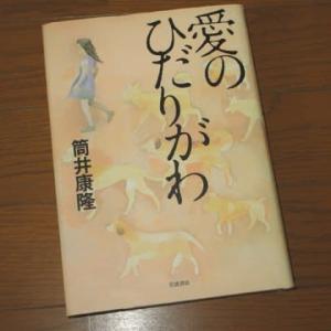 筒井康隆さんの書籍・『愛のひだりがわ』